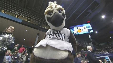 Ozzie the Osprey is the most sexual mascot in the NCAA
