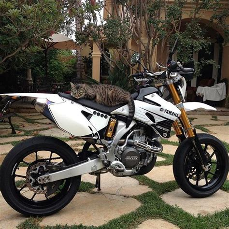 This time its a tiger guarding Snake his Yamaha WR450F #